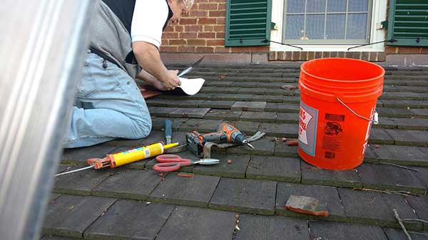 roof repairs to prevent the entry of pests